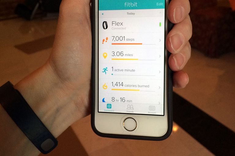 Fitbit Flex Activity Data on App