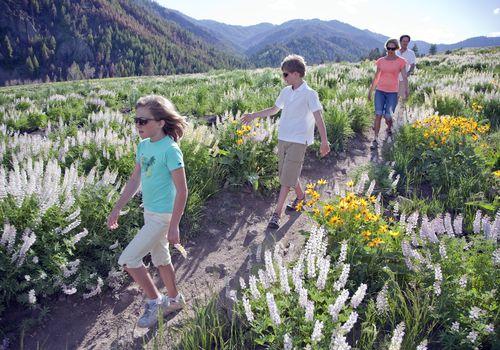 Familia caminando a través de flores en Idaho
