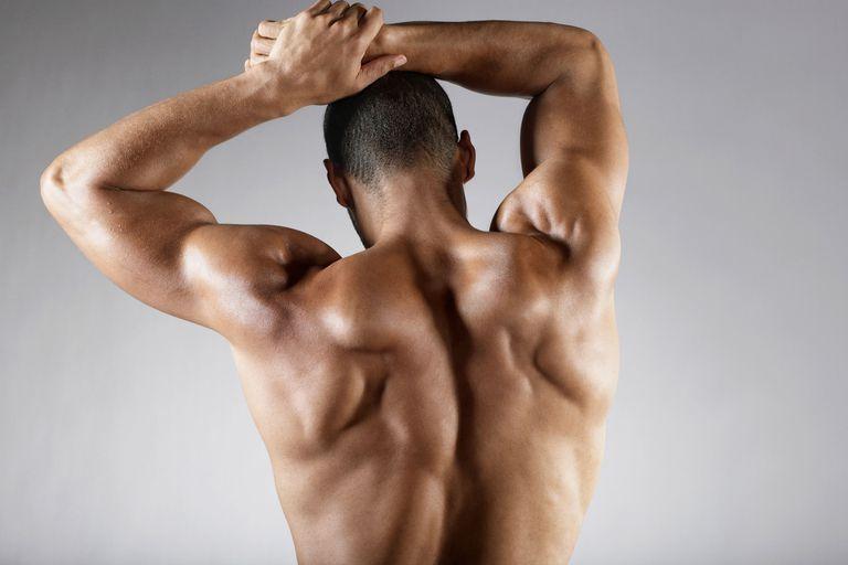 Face Pulls Shoulder Rear Delt Exercise
