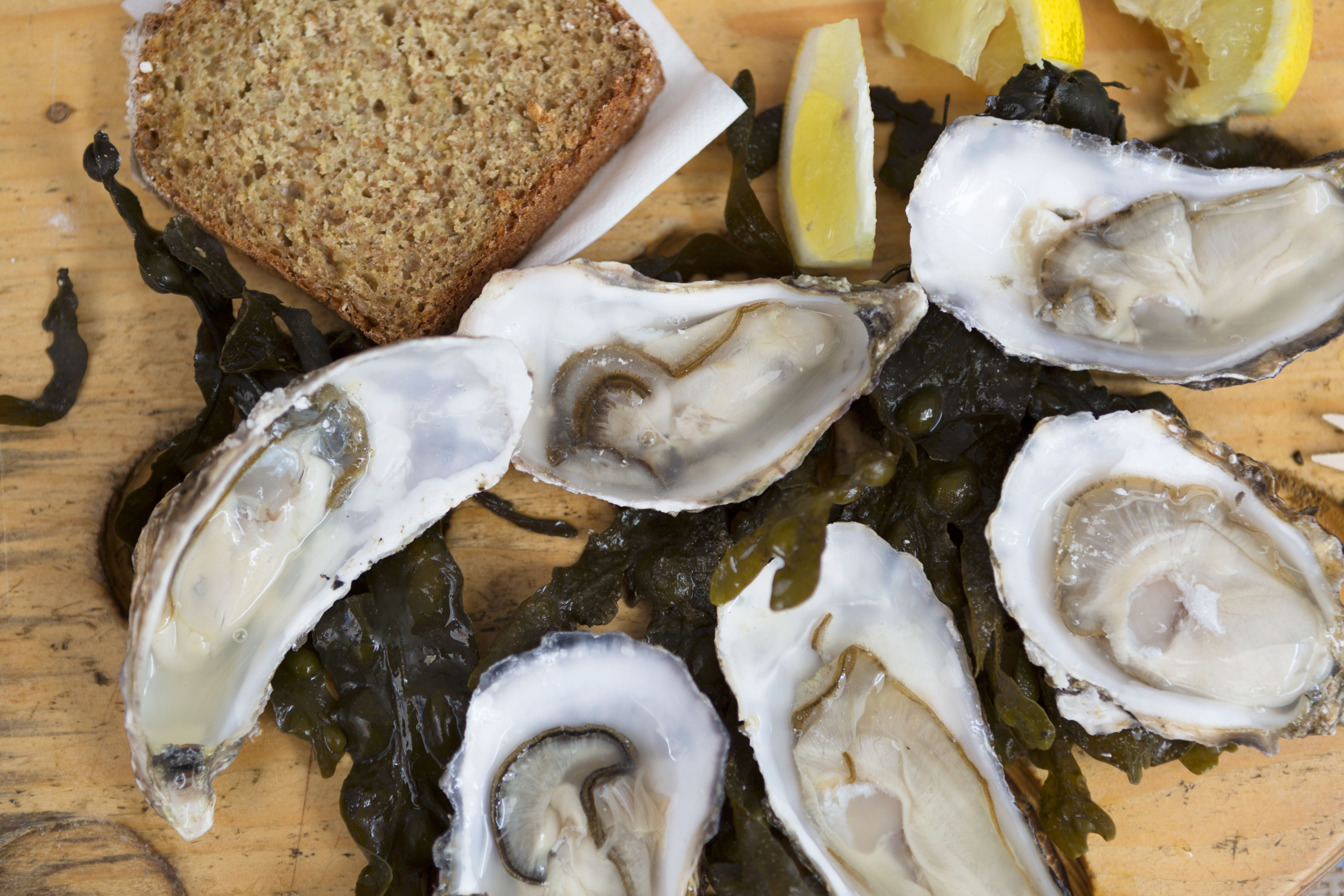 oyster nutrition facts: calories and health benefits
