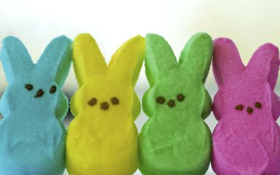 Easter marshmallow bunny candies