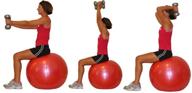 A Huge Variety Of Exercises For Your Triceps