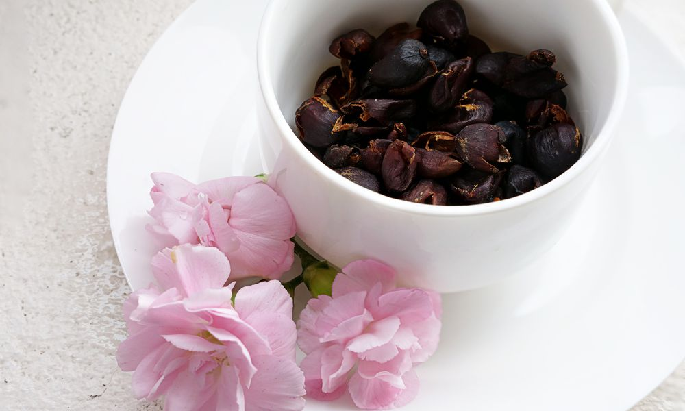 cascara or coffee cherry tea