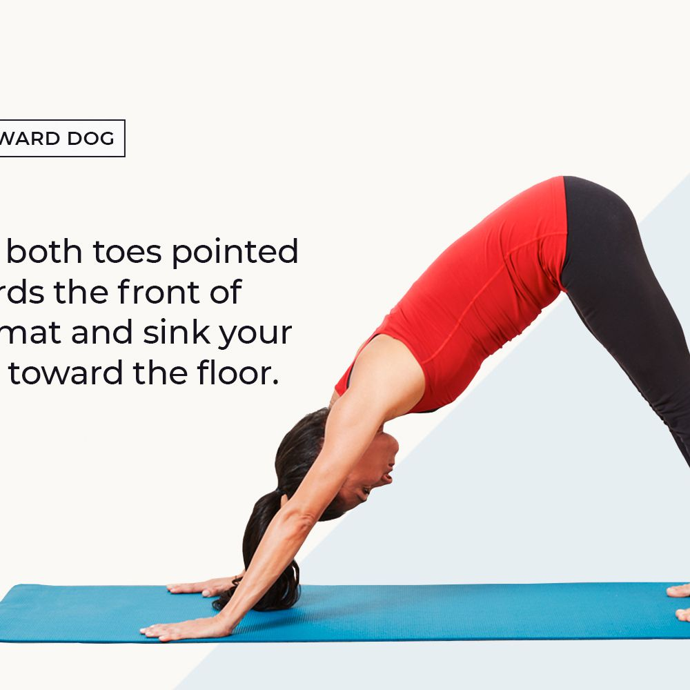 Must-Know Yoga Poses for Beginners