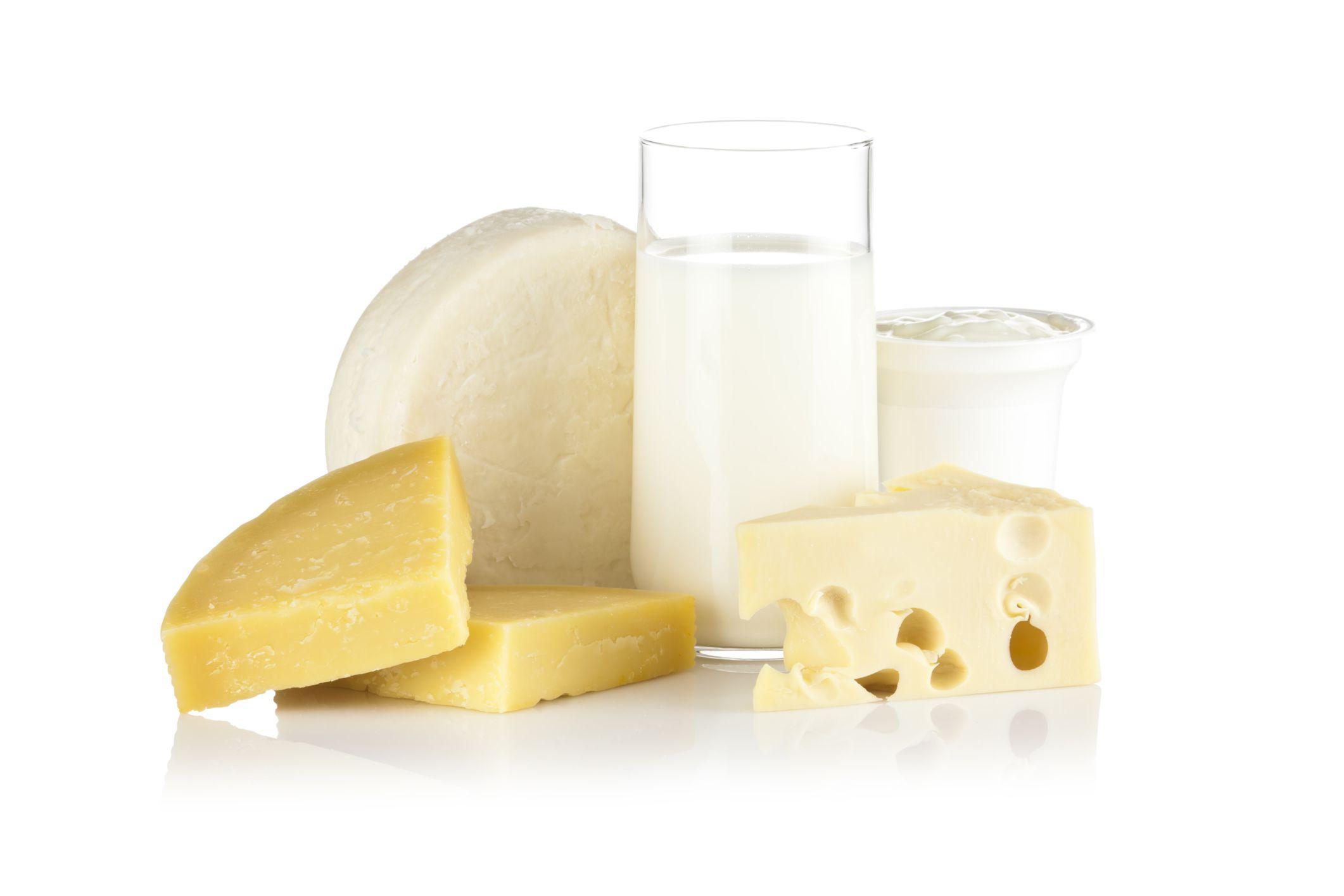 leche y quesos