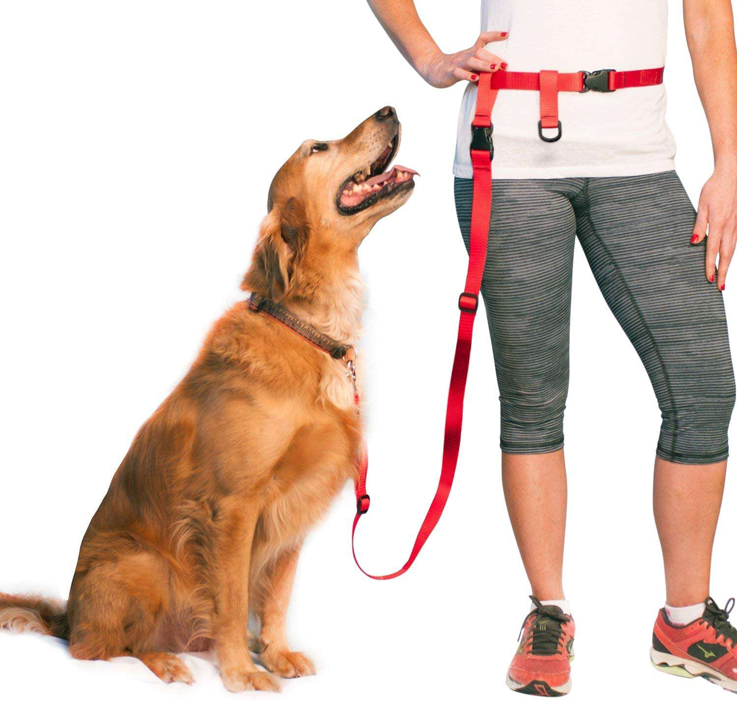 The Buddy System Adjustable Hands-Free Dog Leash