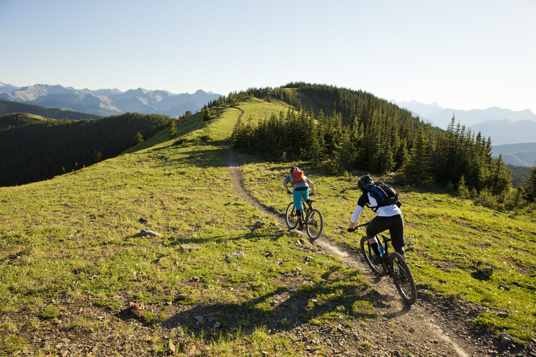 The 8 Best Mountain Bikes Under $1,000 of 2019