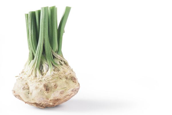 Celery root with cut stalks