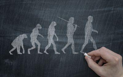 Evolution of Walking