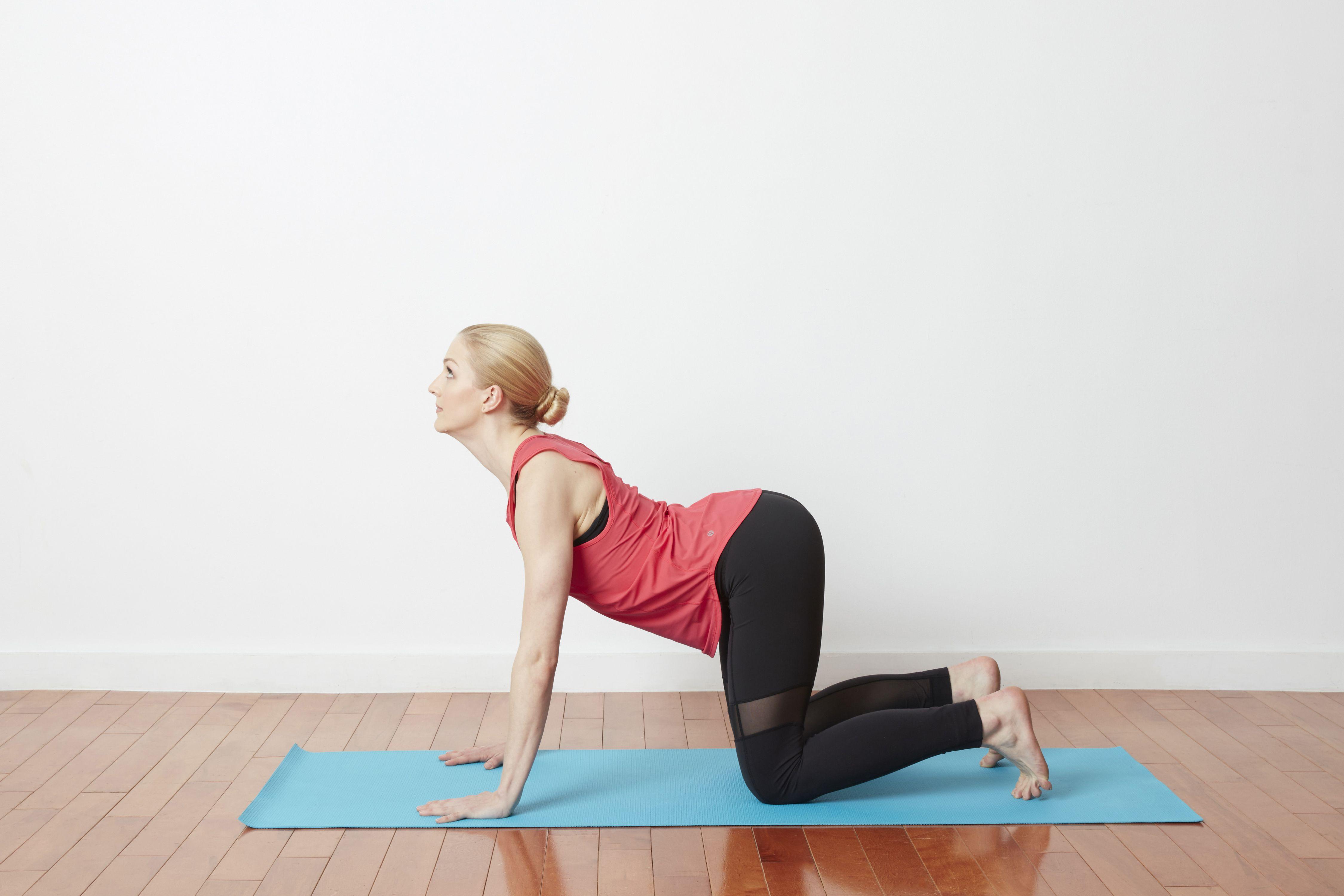 How to Do Cat-Cow Yoga Stretch or Chakravakasana