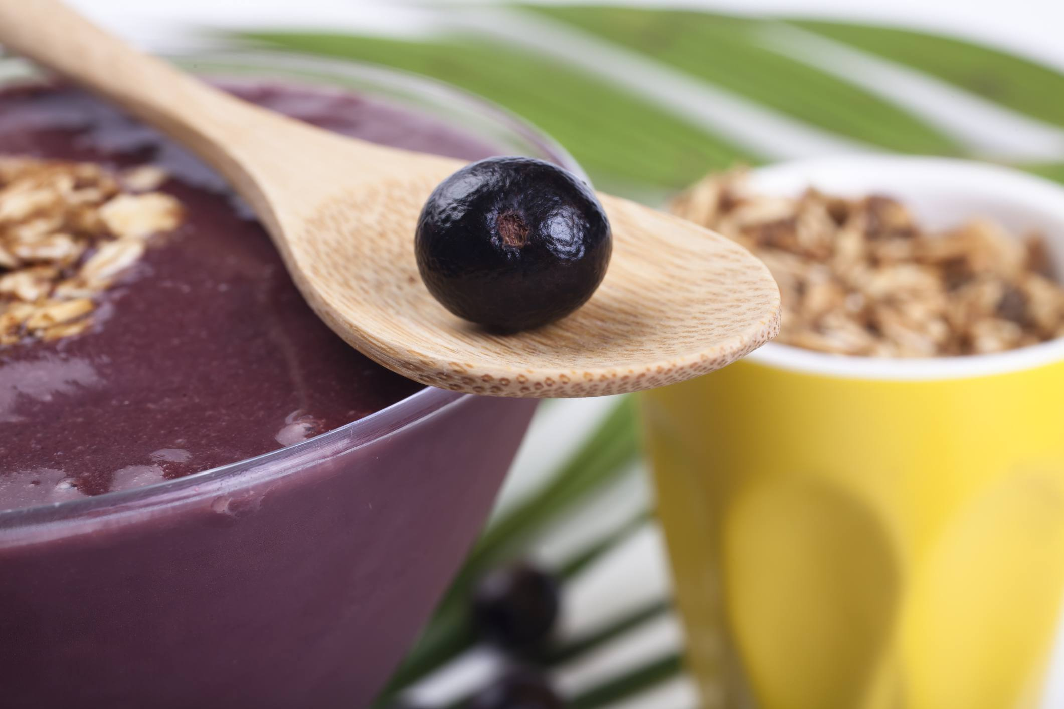 Acai Berry Diet Pros Cons And How It Works