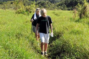 Hiking to the Rim of Waipio Valley on a Waipio Rim Hike Adventure with Hawaii Forest and Trail
