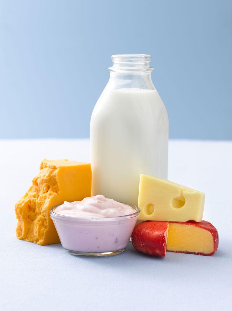 Dairy Products, Milk, Cheese, and Yogurt
