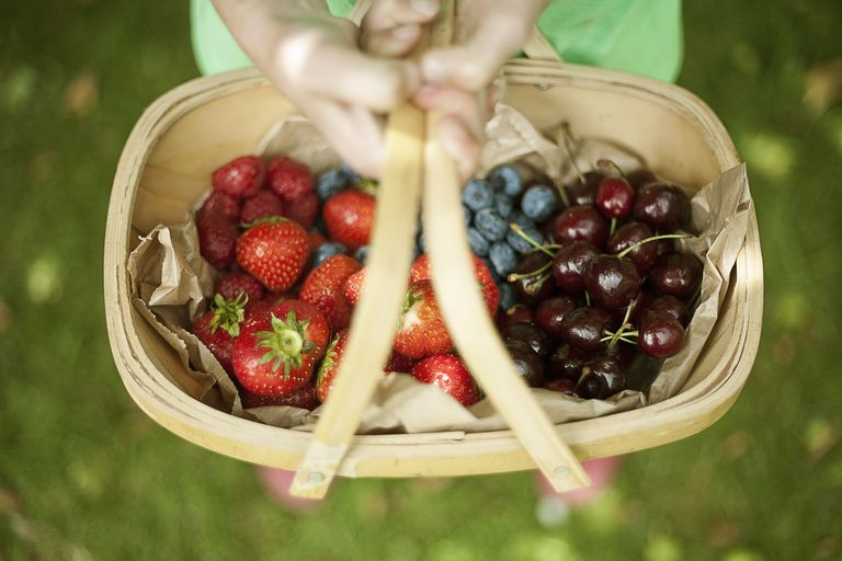 Garden trug of assorted berries