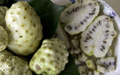 Nopal (Prickly Pear): Benefits, Side Effects, Dosage