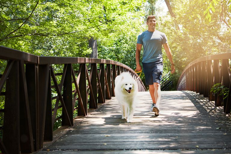 man walking across bridge with dog