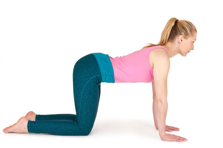 Hands and knees preparation for cat cow stretch