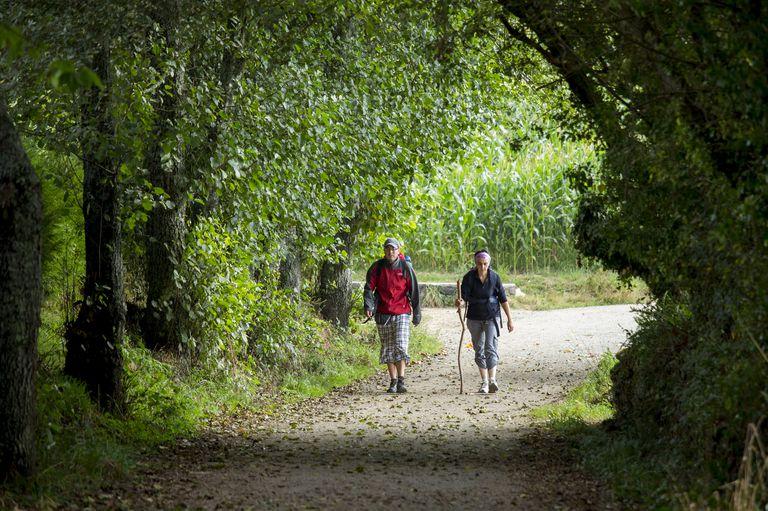 Camino de Santiago Walkers in Galicia