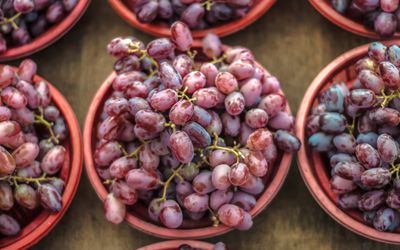 resveratrol from red grapes