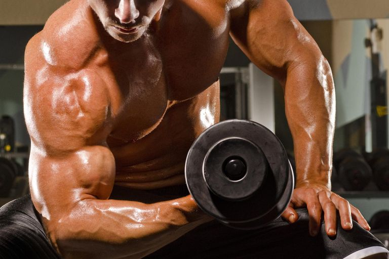 How Much Protein Is Too Much in Bodybuilding?
