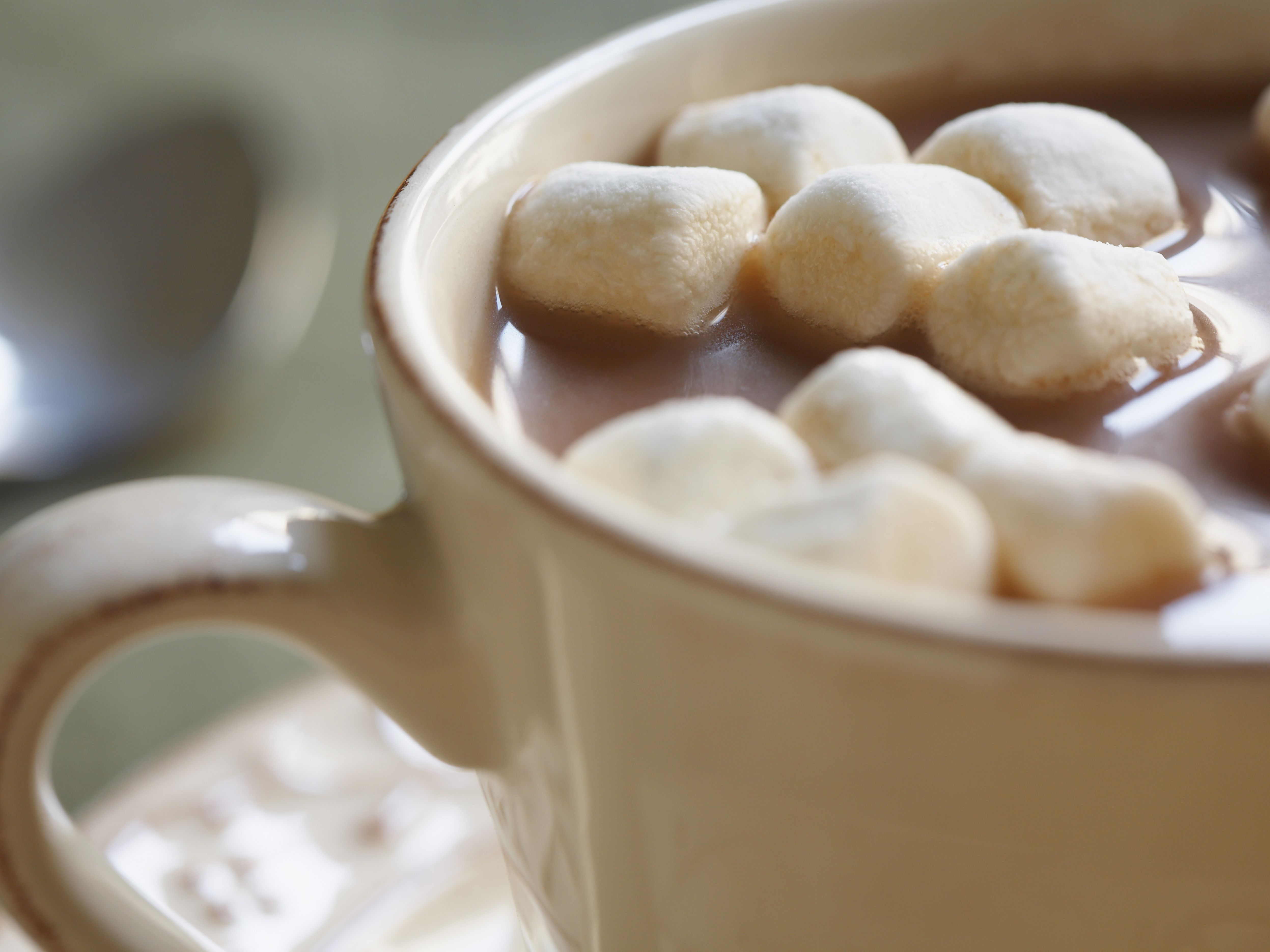Gluten Free Hot Chocolate And Cocoa Brands