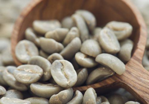 Green Coffee Benefits Side Effect Dosage Interactions
