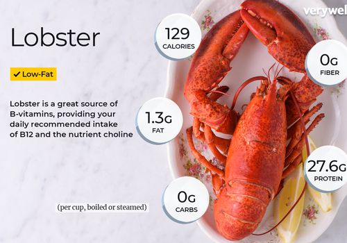Lobster annotated