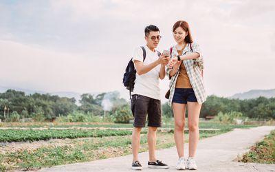 Couple Checks Their Devices
