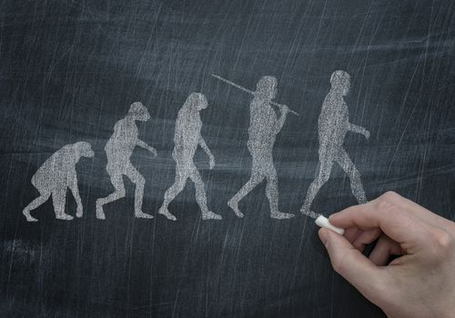 Evolution of Walking