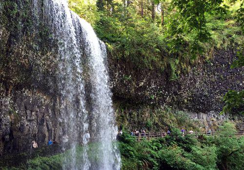 Senderismo detrás de Silver Falls