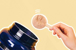 Best Plant-Based Protein Powders