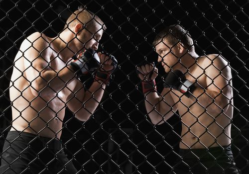 lucha de artes marciales mixtas