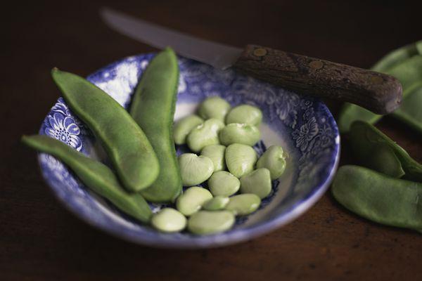 lima bean nutrition