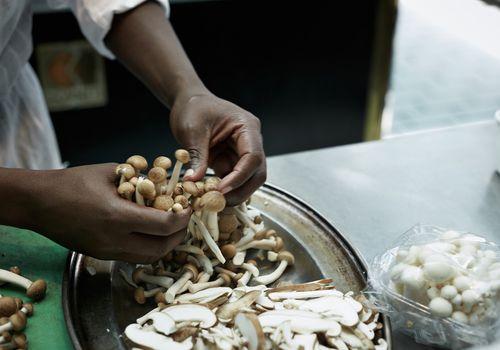 Sorting mushrooms