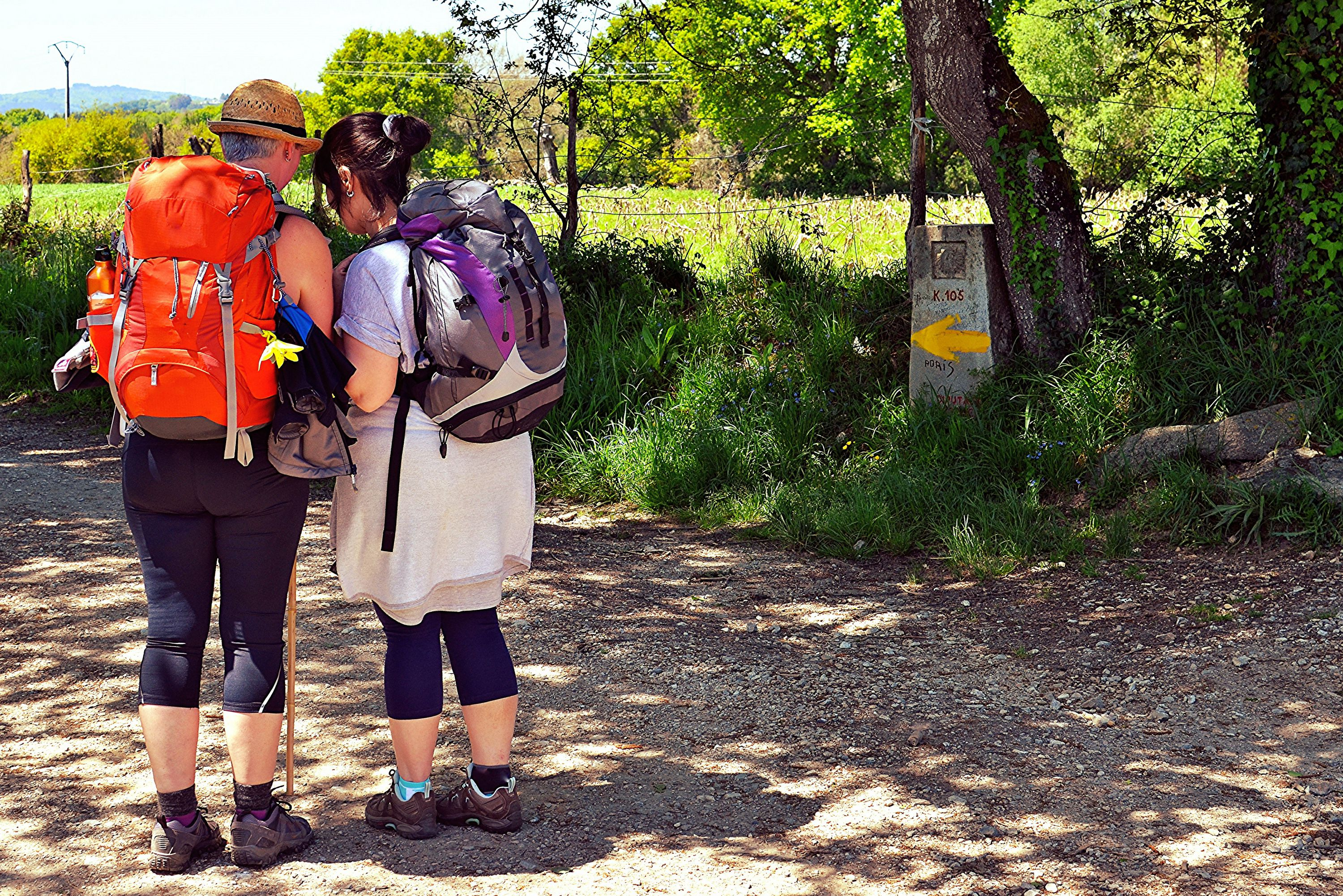 Walkers With Packs on the Camino de Santiago