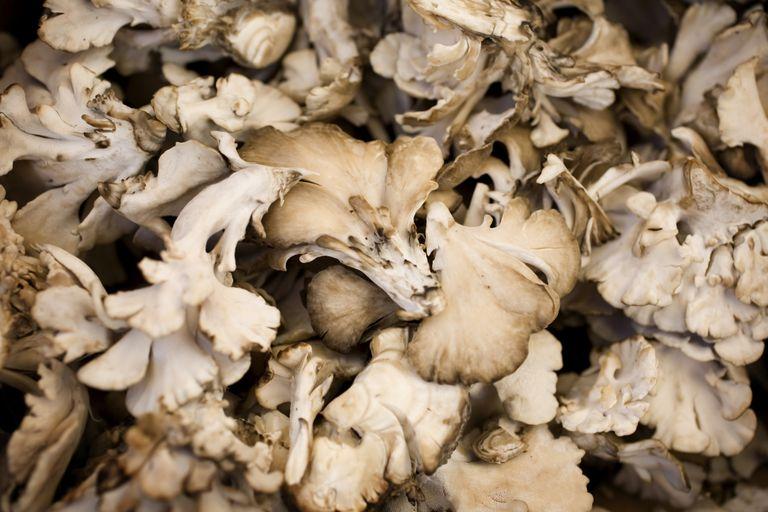 Maitake mushrooms are high in vitamin D.