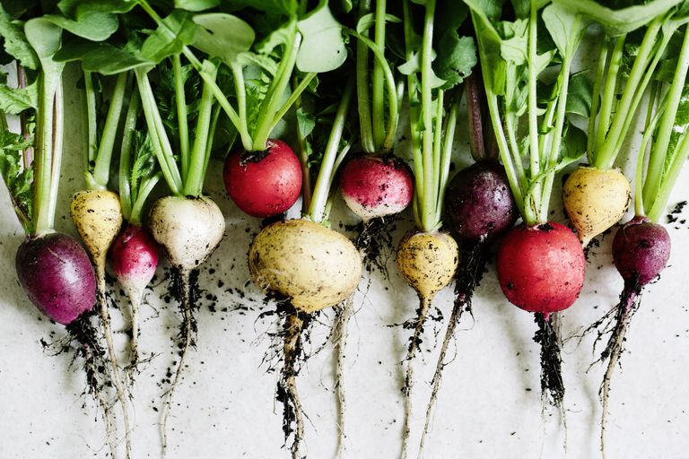 The Best Root Vegetables For A Low Carb Diet