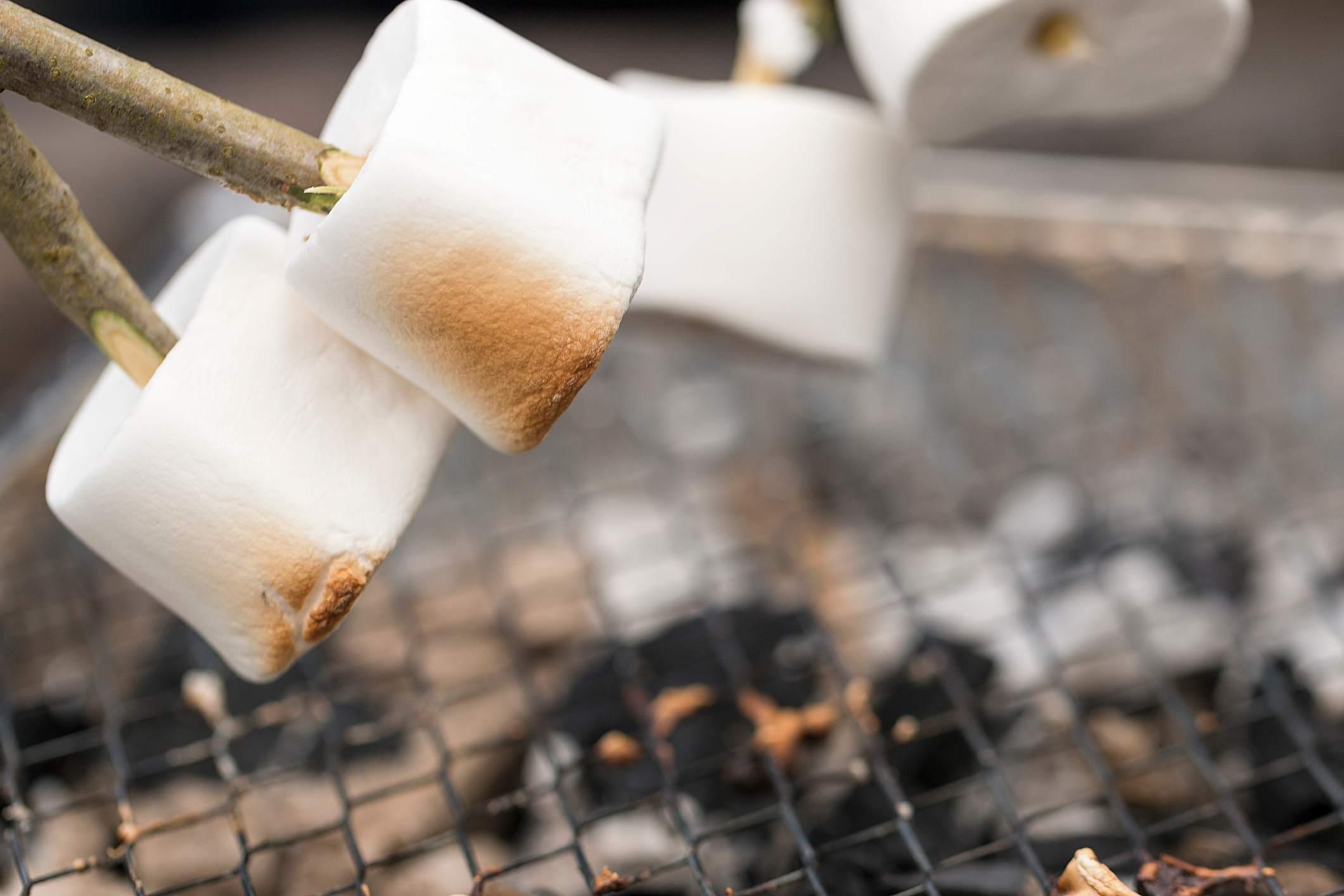 Marshmallows toasting on sticks