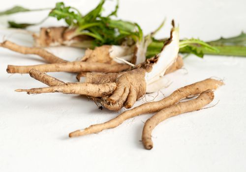 Chicory root pieces on a white counter