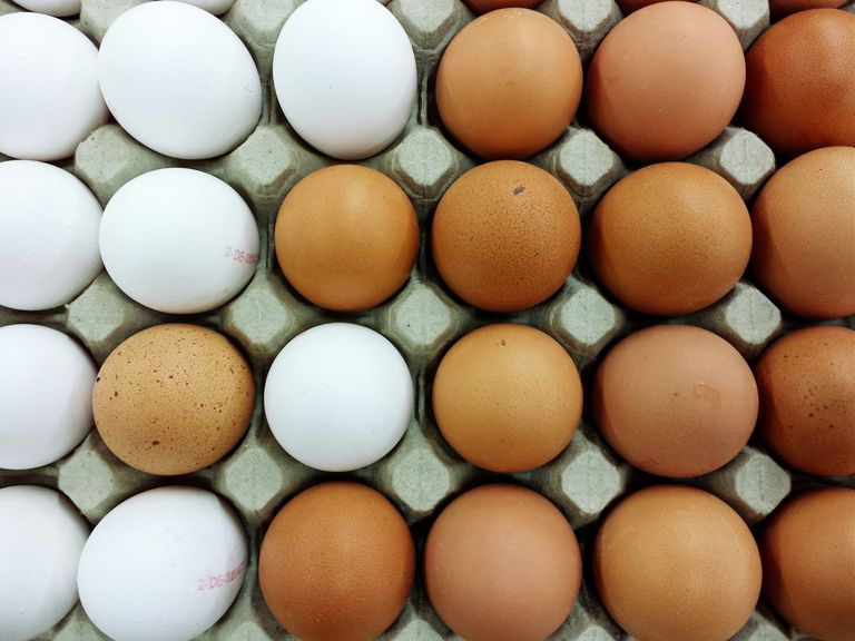 brown and white eggs in carton
