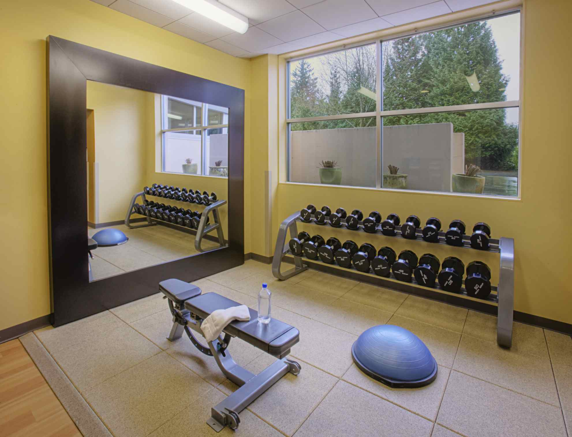 Home gym necessities for serious lifters mybeautygym