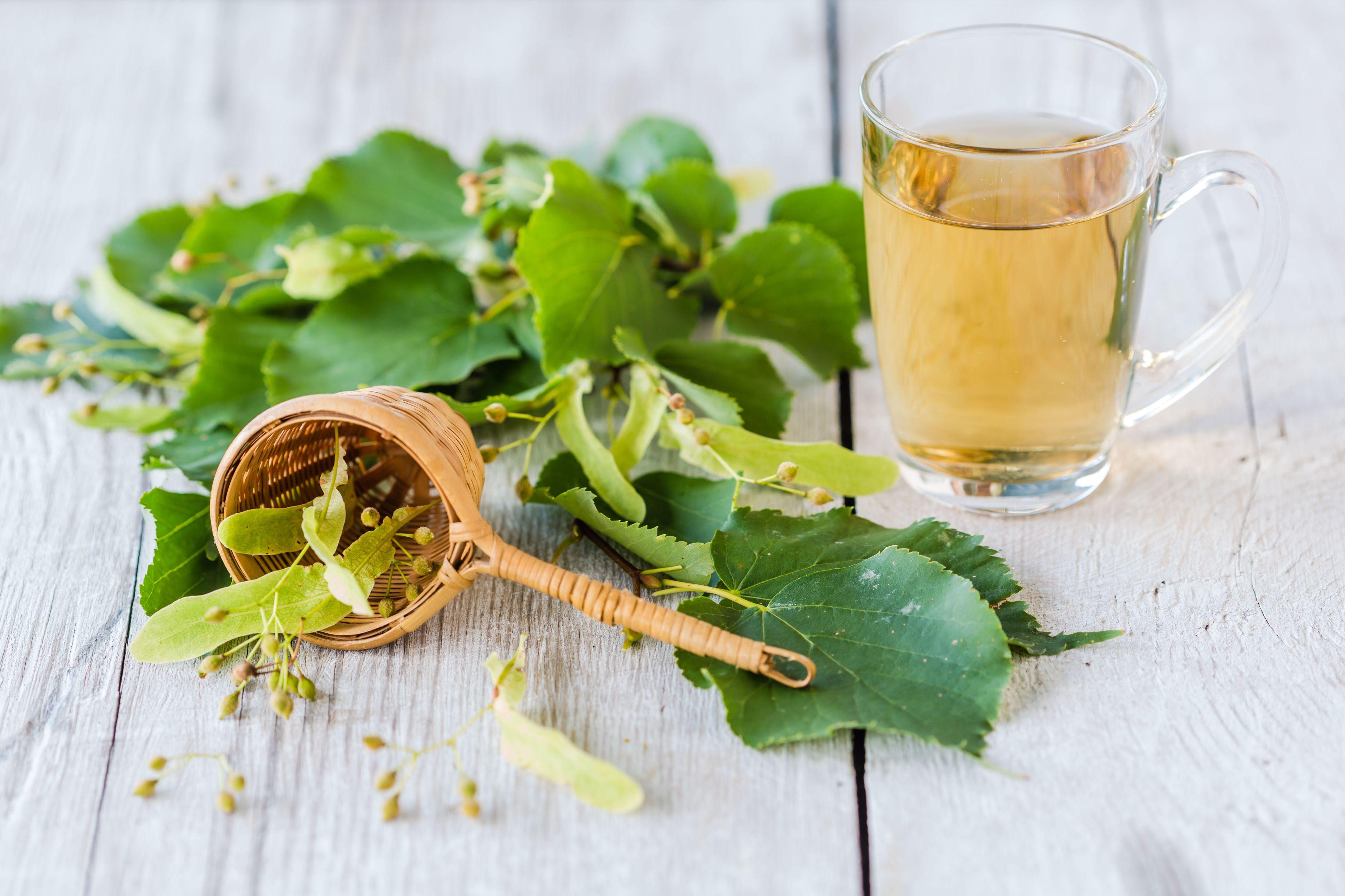 Linden tea benefits and side effects izmirmasajfo