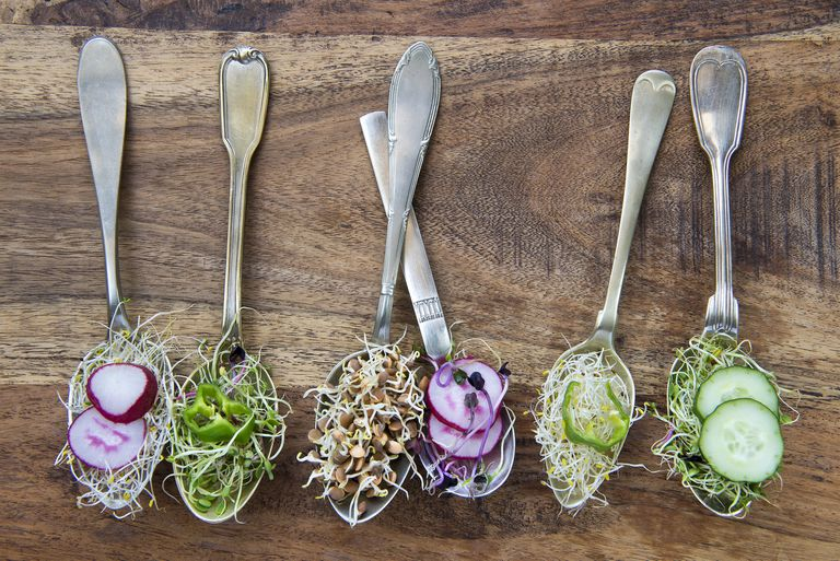 sprouts on spoons