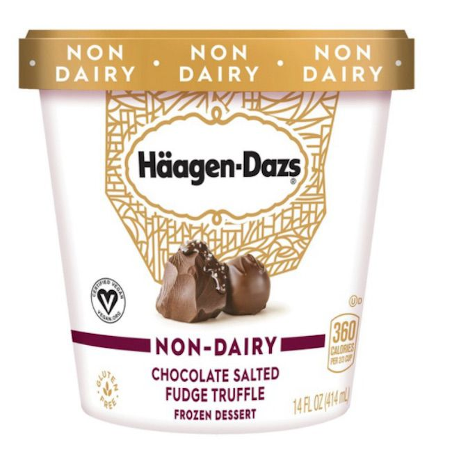 Häagen-Dazs Non-Dairy Chocolate Salted Fudge Truffle Frozen Dessert