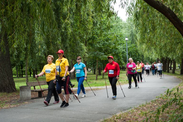 Walkers during a marathon in a park