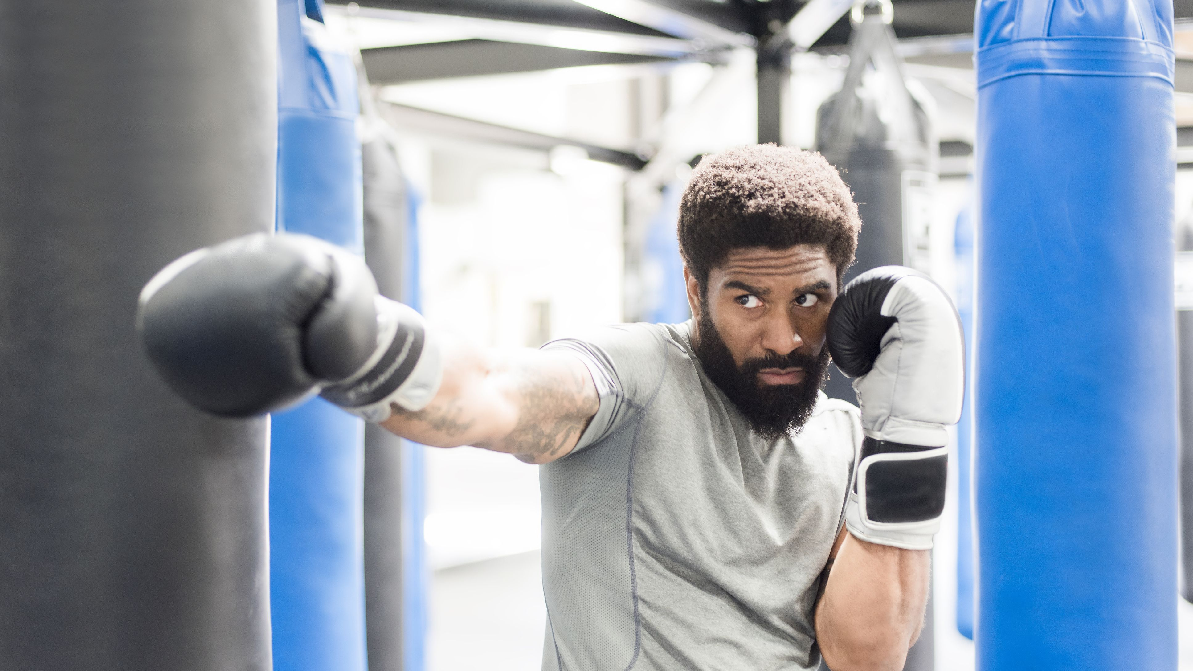 The 7 Best Punching Bags of 2019