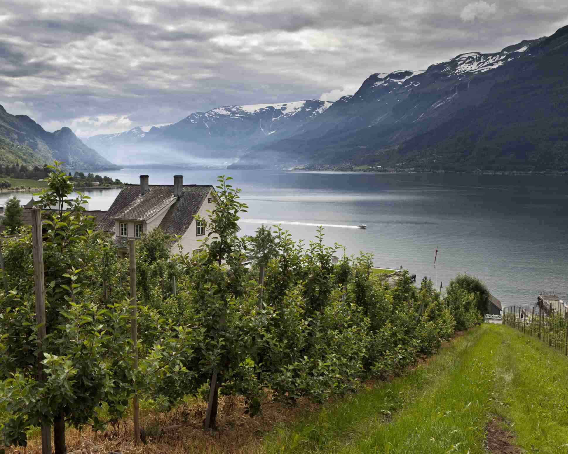 Noruega - Dieta nórdica