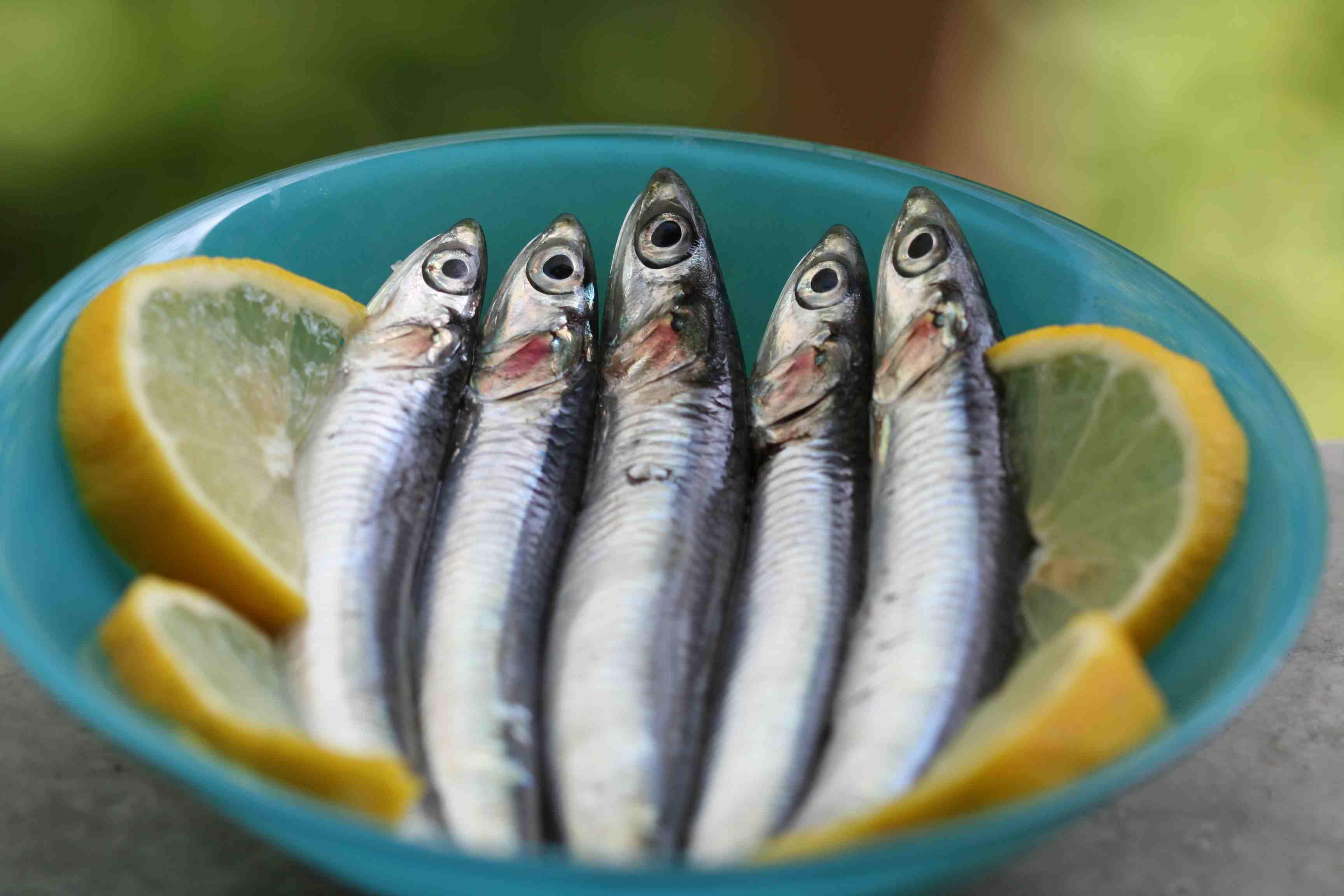 Top 8 Fish for Omega-3 Fatty Acids