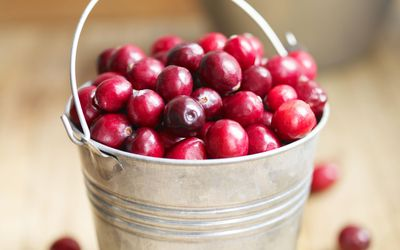 Fresh Cranberries in Pail