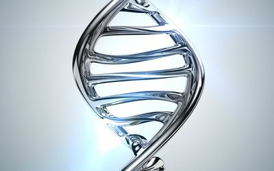Strand of DNA helix made from chrome